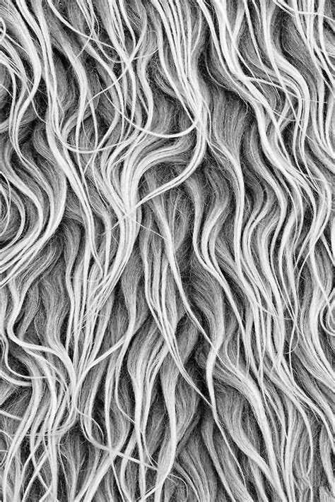 white hair pattern pin by no 235 l mcguinness on texture pattern pinterest