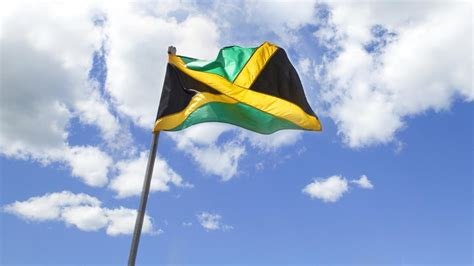 jamaican flag colors jamaica calls for global regulations to promote safety