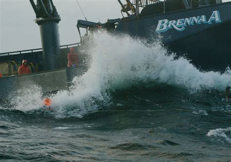 deadliest catch discovery the 6 year jump big reunion and more the 100 cast