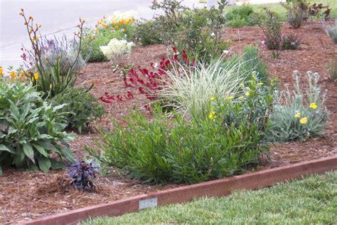 eco friendly landscaping eco friendly garden tour jerry barbara s garden sonoma marin saving water partnership