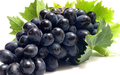 manfaat  khasiat buah anggur  kesehatan khasiat