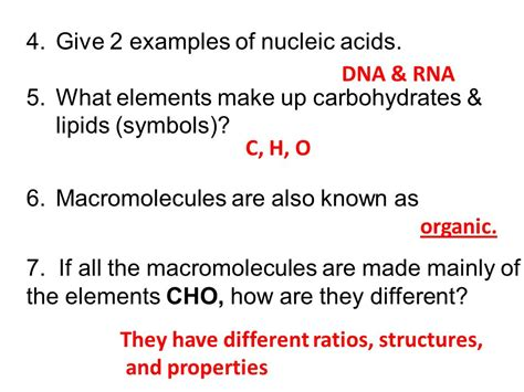what are carbohydrates made of macromolecules review ws ppt