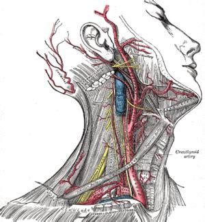 how long do spinal headaches last after c section headache after carotid endarterectomy things you didn t know