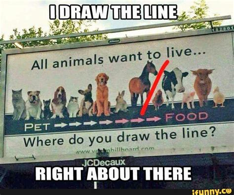 8 Animals That You Dont Want To Cross Paths With In The by When And Where Will You Draw The Line Calguns Net