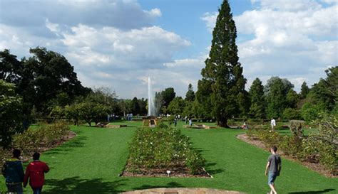 emmarentia botanical gardens popular attractions in johannesburg south africa osmiva