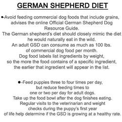 bethebest3 german shepherd diet diet and useful summary