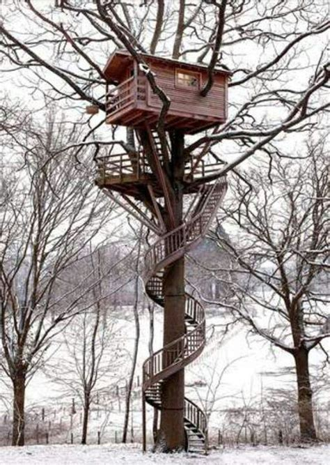 awesome tree houses amazing tree house trees pinterest