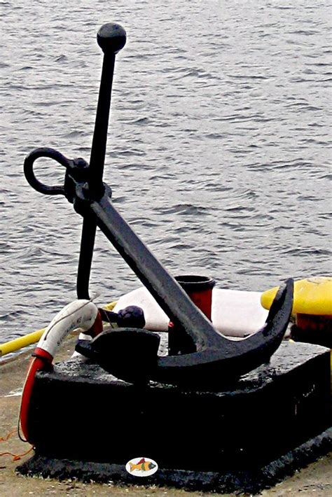best fishing boat anchor 6879 best images about fishing tips and pictures on