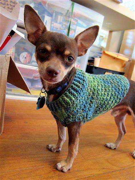 Jo In Pet Ear Hat S 25 best ideas about crochet sweater on