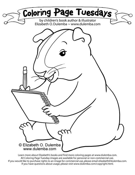 guinea pigs online splash page guinea pig coloring pages coloring home