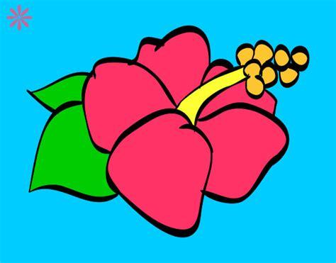 imágenes de flores muy bonitas para dibujar dibujos de flores bonitas imagui