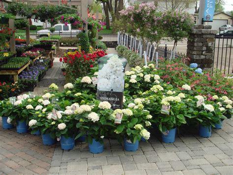 garden center berg s nursery