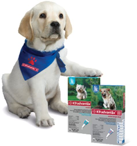k9 advantix puppy k9 advantix ii coupons 2017 2018 best cars reviews