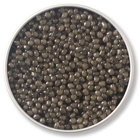 Sho Caviar by Caviar Shop Caviar Russe Overnight Shipping