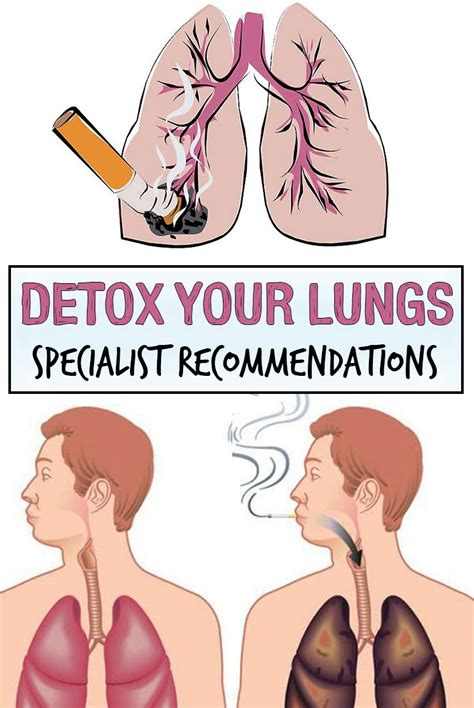 How Do You Detox Your Lungs by Detox Your Lungs Specialist Recommendations Iwomenhacks