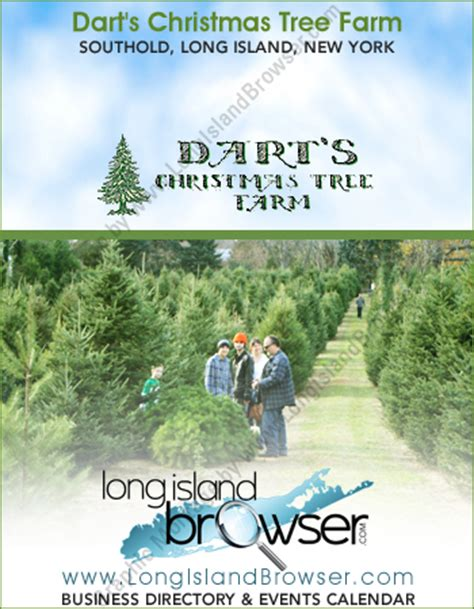 dart s christmas tree farm southold cut your own