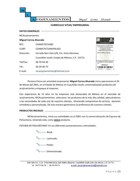 Modelo Curriculum Vitae Empresarial Curriculo Empresarial