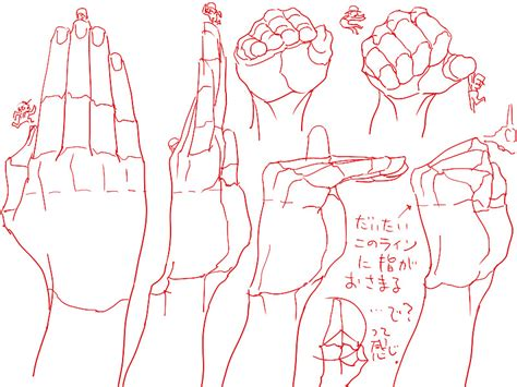 Drawing Human Anatomy by Drawing Draw Finger Human Anatomy Different