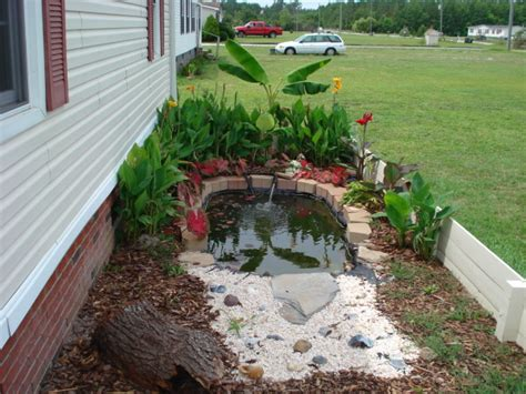 backyard turtle pond designs house design and decorating