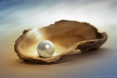 The Pearls 5 facts about pearls bill frymirebill frymire