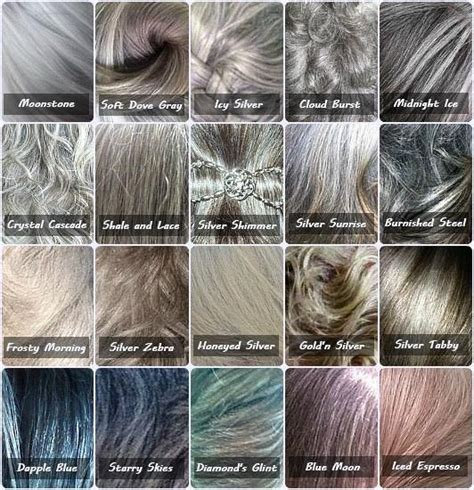 types of grays gray color chart because not all gray hair is the same