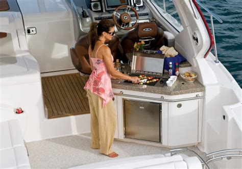 boat mini grill chaparral 420 premiere 2011 2011 reviews performance