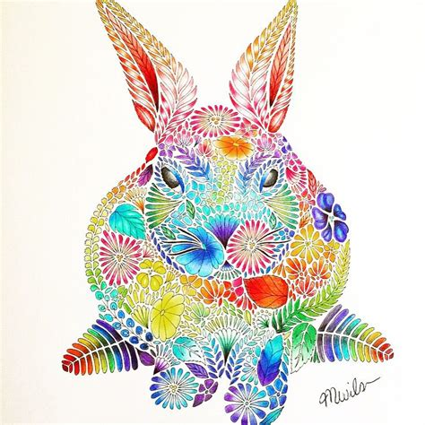 rainbow rabbit   millie marotta animal kingdom