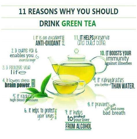 How Much Green Tea Should I Drink To Detox by 7 Facts About Green Tea That Will Change The