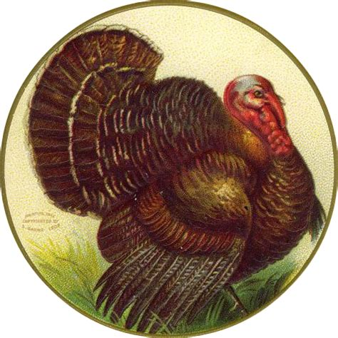 Thanksgiving Free Clip Vintage by Free Vintage Thanksgiving Clip Vintage Crafts