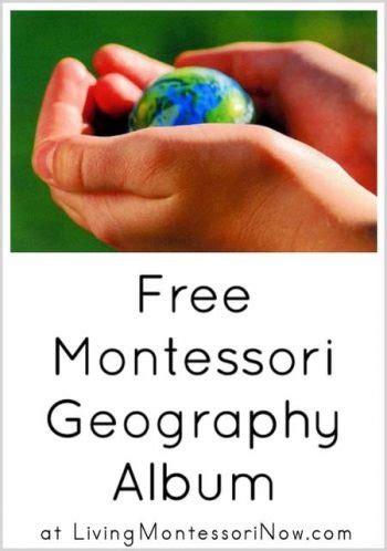 printable montessori albums free montessori botany materials for a gardening unit
