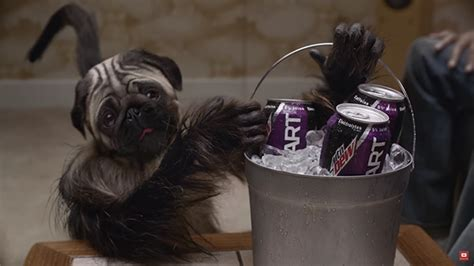 mountain dew puppy monkey baby mountain dew s puppy monkey baby bowl spot is as as it is addictive adweek