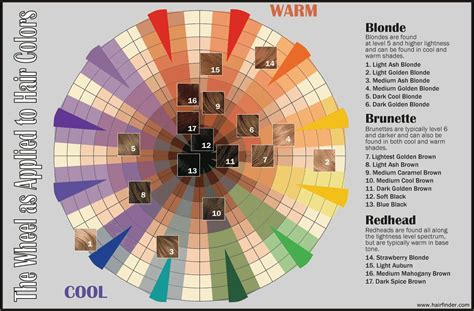 color wheel for hair colors wheels and hairstyles on of color wheel