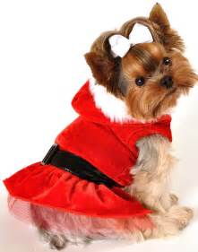 Christmas dog clothing dress holiday puppy pet extra small santa