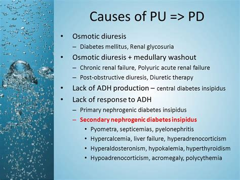 pu pd in dogs disorders of water balance polyuria polydipsia and hypodipsia ppt