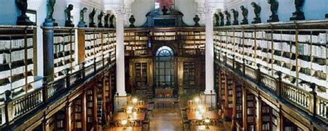 pavia biblioteca universitaria tirrenia srl disinfestazione archivio biblioteca