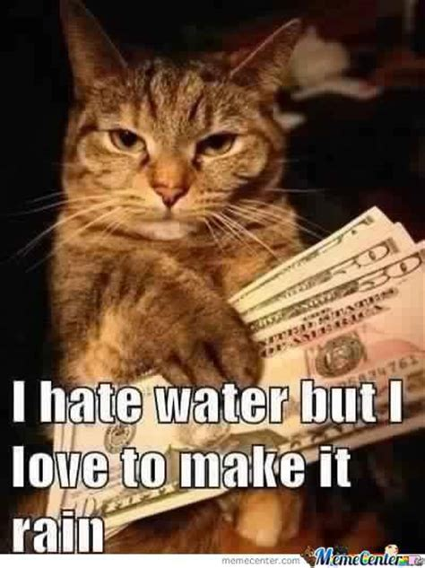 Make It Rain Meme - kitty likes to make it rain by jamil meme center