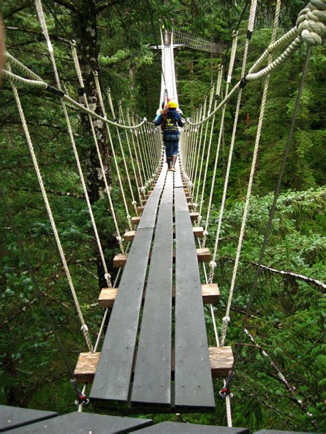 rope swing bridge swinging bridges and ziplining ropes course in alaska