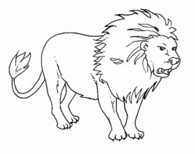 african wild dog coloring page animals town animals
