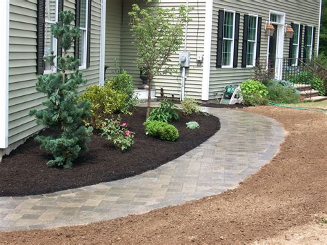 walkway plants dragos landscaping