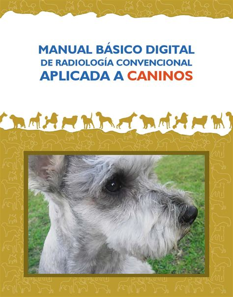 manual de backpacking bã sico cã mo disfrutar manual b 225 sico digital de radiologia convencional aplicada