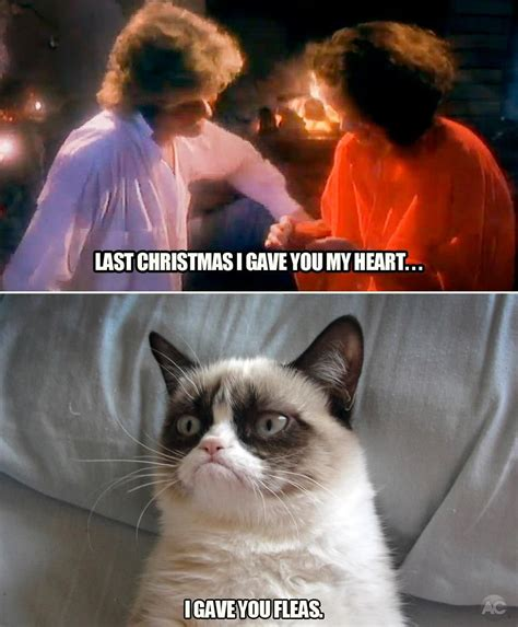 Merry Christmas Cat Meme - last christmas grumpy cat grumpy cat meme and meme