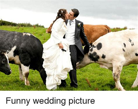Pictures Of Wedding Pictures by 25 Best Memes About Wedding Pictures