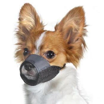 muzzle petco petco mesh muzzle price 12 99 14 99 today s price 11 69