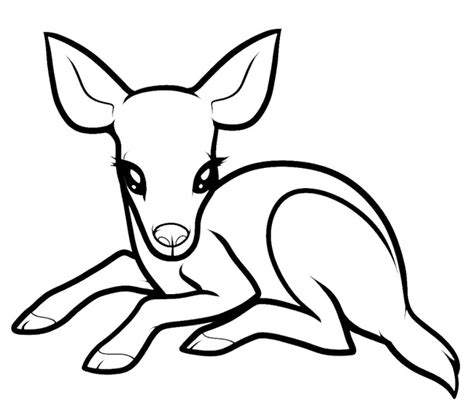 Baby Deer Coloring Pages free deer colring pages coloring pages