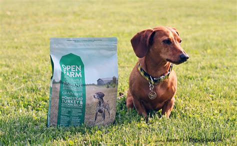 open farm food open farm ethically raised food review giveaway ammo the dachshund