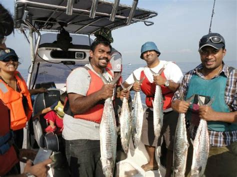 boat club chennai number barracuda bay sport fishing chennai 2018 what to know