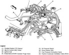 chevy 4 3 v6 vortec wiring harness diagram get free image about wiring diagram