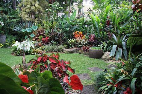 crea tu propio jard 237 n de plantas tropicales