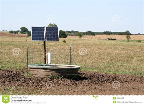 livestock and solar panels rangelands solar powered stock tank stock photo image of animals