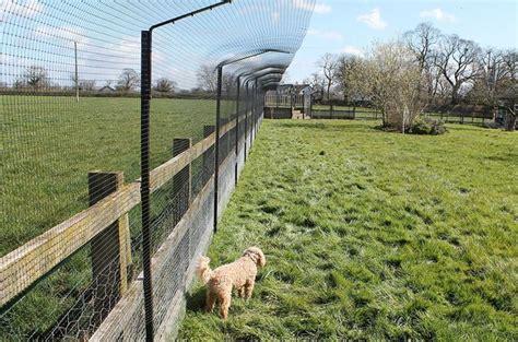 rete da giardino per cani recinti per cani fai da te recinzioni casa come